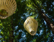 ` 07 de promenade d'arbre de ` de séquoias Photo libre de droits
