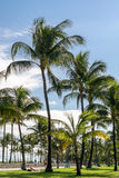 De Promenade van het zuidenstrand, het Strand van Miami, Florida Royalty-vrije Stock Fotografie
