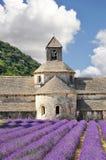De Provence Royalty-vrije Stock Fotografie