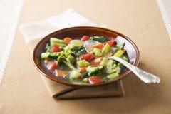 De Provence des Gemüses Stew lizenzfreies stockfoto