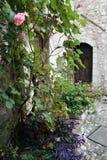 De Provence na regen Stock Foto