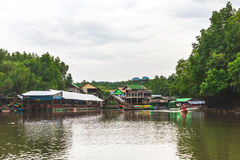 De provincie van Krabi, Thailand Kayakingspost Mangrovewildernis Stock Foto's
