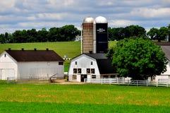 De Provincie van Lancaster, PA: Amishlandbouwbedrijf Stock Fotografie