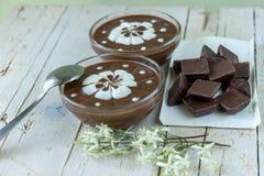 De pudding van de chocolade met slagroom Stock Foto