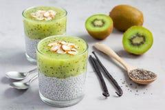 De pudding van vanillechia met kiwi, gelaagd dessert, concrete achtergrond stock foto's