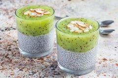 De pudding van vanillechia met kiwi, gelaagd dessert, concrete achtergrond royalty-vrije stock fotografie