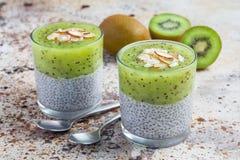 De pudding van vanillechia met kiwi, gelaagd dessert, concrete achtergrond royalty-vrije stock afbeelding