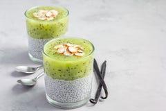 De pudding van vanillechia met kiwi, gelaagd dessert, exemplaarruimte stock foto's