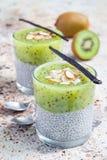 De pudding van vanillechia met kiwi, gelaagd verticaal dessert, stock afbeelding