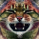 De punker van de kat stock fotografie