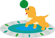Puppy met een bal Stock Afbeeldingen