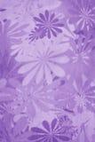De purpere Achtergrond van de Bloem Royalty-vrije Stock Foto