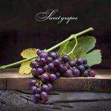 De purpere druiven van de kunst op oude houten achtergrond Stock Foto's