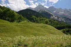 De Pyreneeën in de zomer Royalty-vrije Stock Afbeelding