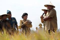 De récolte de riz le président ensemble photographie stock