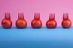 De résumé toujours la vie avec des tomates et des fourchettes Photographie stock