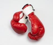 De röda boxninghandskarna Royaltyfri Fotografi