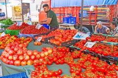 De röda tomaterna i den Antalya marknaden Royaltyfri Fotografi