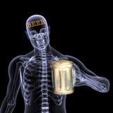 De Röntgenstraal van het skelet - Bier Stock Foto's