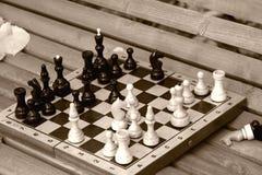 De raad van het schaak op de bank Stock Afbeeldingen