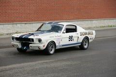 De Raceauto van Shelby royalty-vrije stock afbeelding