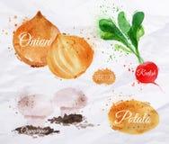 De radijzen van de groentenwaterverf, uien, aardappels, Stock Afbeeldingen