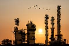 De raffinaderij van de olie tijdens zonsondergang met vogels die langs vliegen Royalty-vrije Stock Fotografie