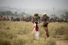 De Rajasthani flickorna Arkivbild