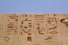 De ram van Egypte royalty-vrije stock foto's