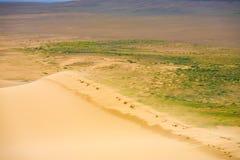 De Rand Mongolië van Khongorels dune sand blowing top royalty-vrije stock fotografie