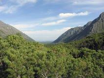 De rand van de Kloofnesteriha Barguzinsky van de landschapsrivier bij Meer Baikal Royalty-vrije Stock Foto's