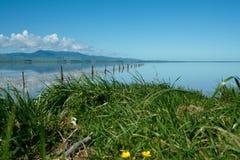 De rand van de landbouwgrond aan mooi meer. Royalty-vrije Stock Fotografie