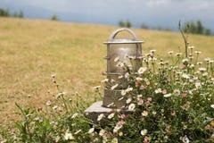 De rand van de tuinverlichting met weinig madeliefje Stock Afbeelding