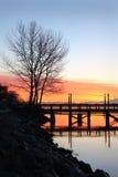 De Rand van het water, Fraser River Morning royalty-vrije stock foto's