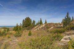 De rand van het zandduin op de kust van Meer Huron - Pinery Provinciaal P stock afbeelding