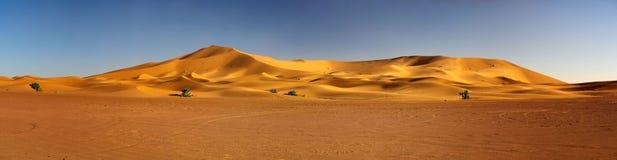 De rand van de Sahara verlaat in Marokko, gele zandduinen, binnen Royalty-vrije Stock Fotografie
