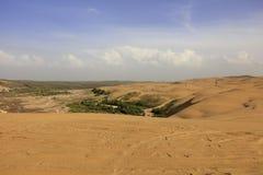 De rand van de woestijn is oase, rgb adobe royalty-vrije stock afbeelding