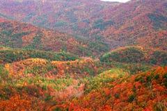 De Randen van de berg Stock Foto
