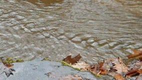 De randen van harde rots leiden tot stroomversnelling van van het de Watervallenkamp van de Brijvork het Park van de de Kreekstaa stock video