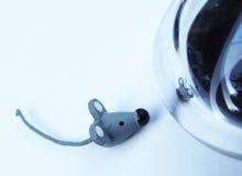 de ratón al ratón foto de archivo