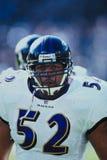 De Raven van Ray Lewis Baltimore Stock Fotografie