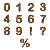 De realistische aantallen van het tijgerbont Royalty-vrije Stock Fotografie