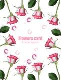 De realistische Vector van de rozenkaart Het decor van uitnodigingsbloemen Stock Fotografie