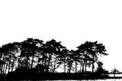 De realistische Vectorillustratie van het boomsilhouet EPS10 Stock Foto's