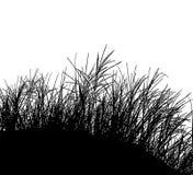 De realistische Vectorillustratie van het grassilhouet EPS10 Royalty-vrije Stock Fotografie