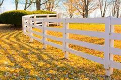 De recente Herfst bij platteland. Stock Afbeelding