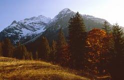 De recente herfst in de bergen Royalty-vrije Stock Fotografie