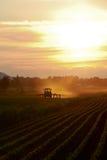 De recente Landbouw van de Avond Royalty-vrije Stock Afbeeldingen