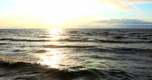 De recente Zomerlandschap van strandduinen, 4k stock video
