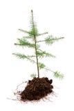 De recessie van Kerstmis royalty-vrije stock afbeelding